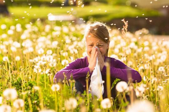 Antiallergiques saisonniers et conseils associés